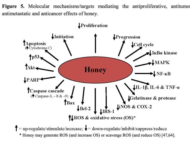 azioni del miele