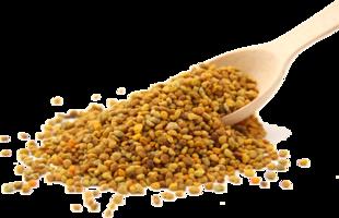 cucchiaio polline