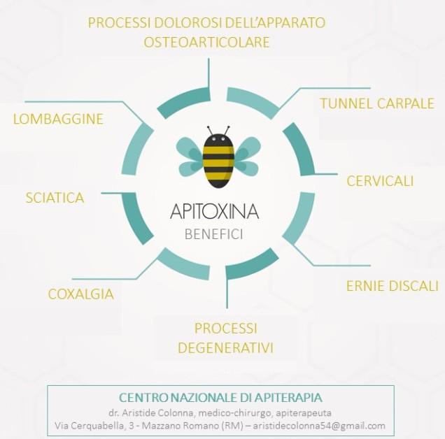 pubblicità apipuntura