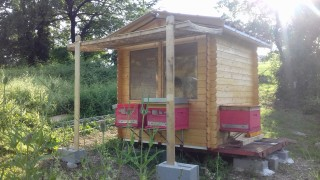 apiario genga