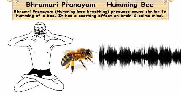 yoga-bhramri pranayam